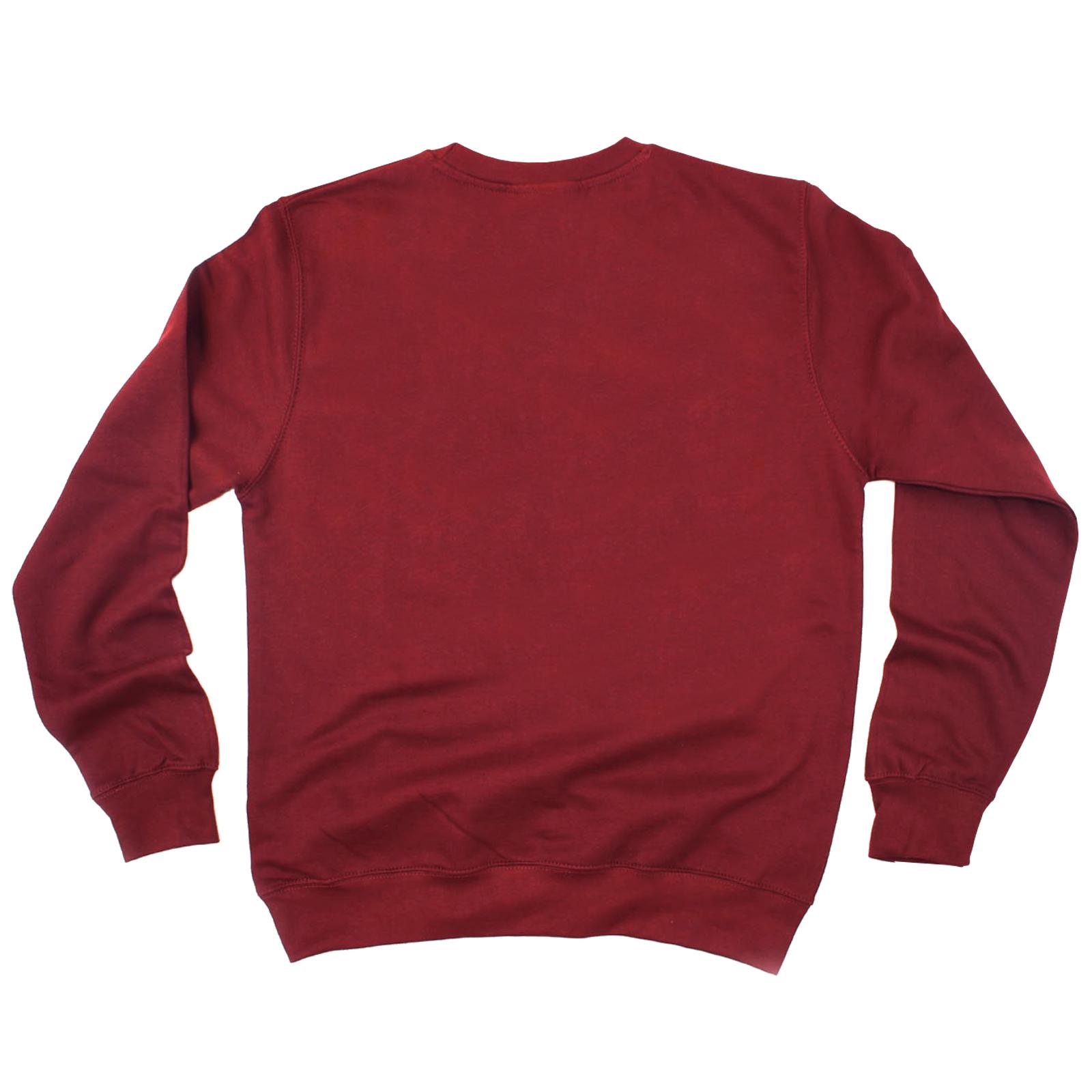 Funny-Sweatshirt-Jenius-Genius-Birthday-Joke-Humour-tee-Gift-Novelty-JUMPER thumbnail 15